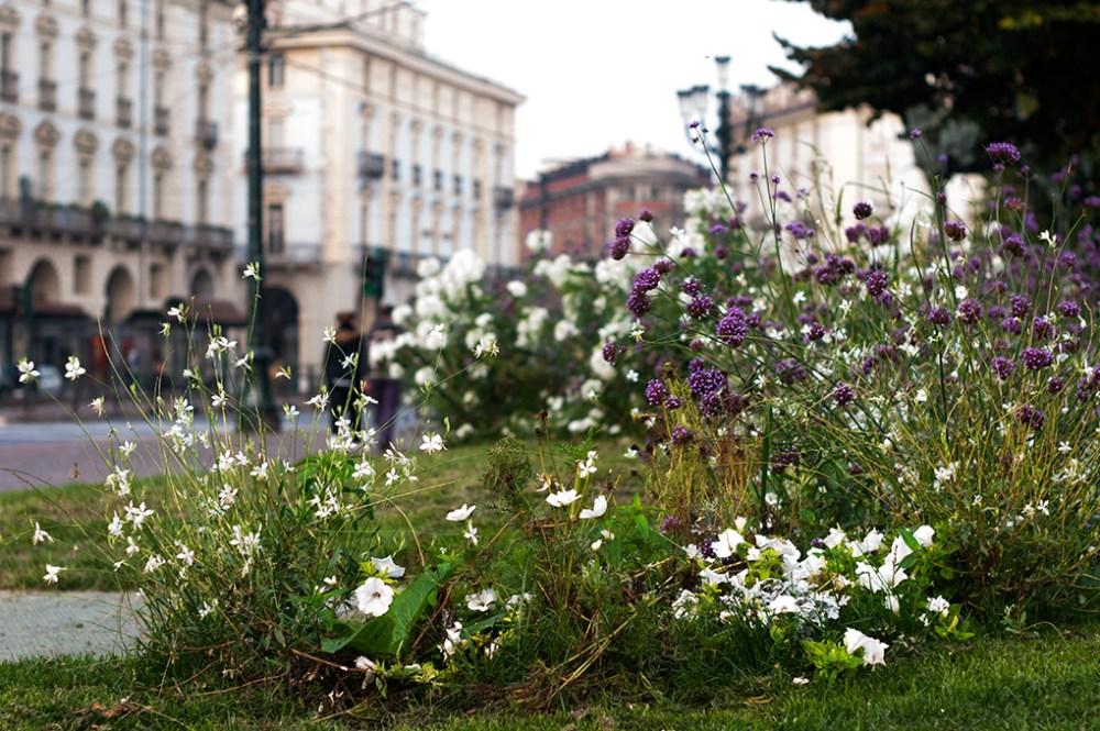 Meeting Fotografi Italiani a Torino (3/6)