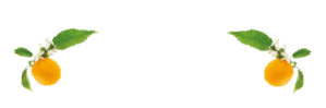 Bed & Breakfast Le Zagare San Vito