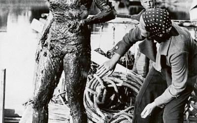 Sally Bauer: de eerste Scandinavische die het Kanaal overzwom