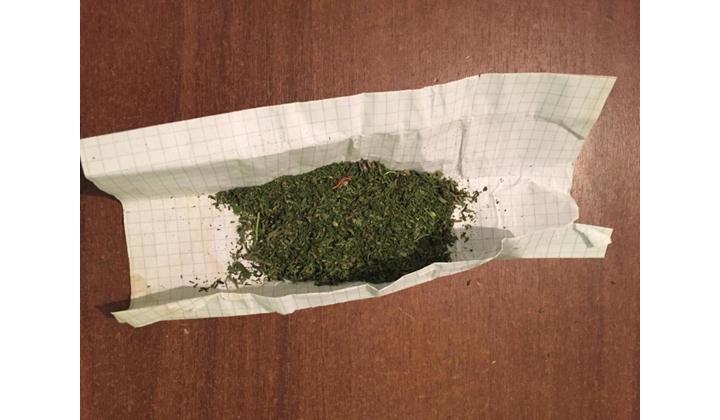 Самур марихуану ответ на представление по уничтожению конопли