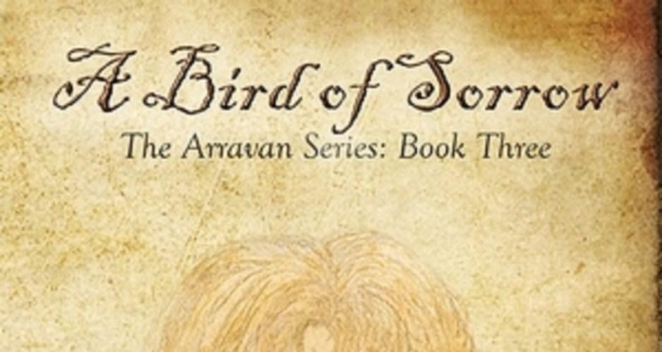 A bird of sorrow by Shea Godfrey