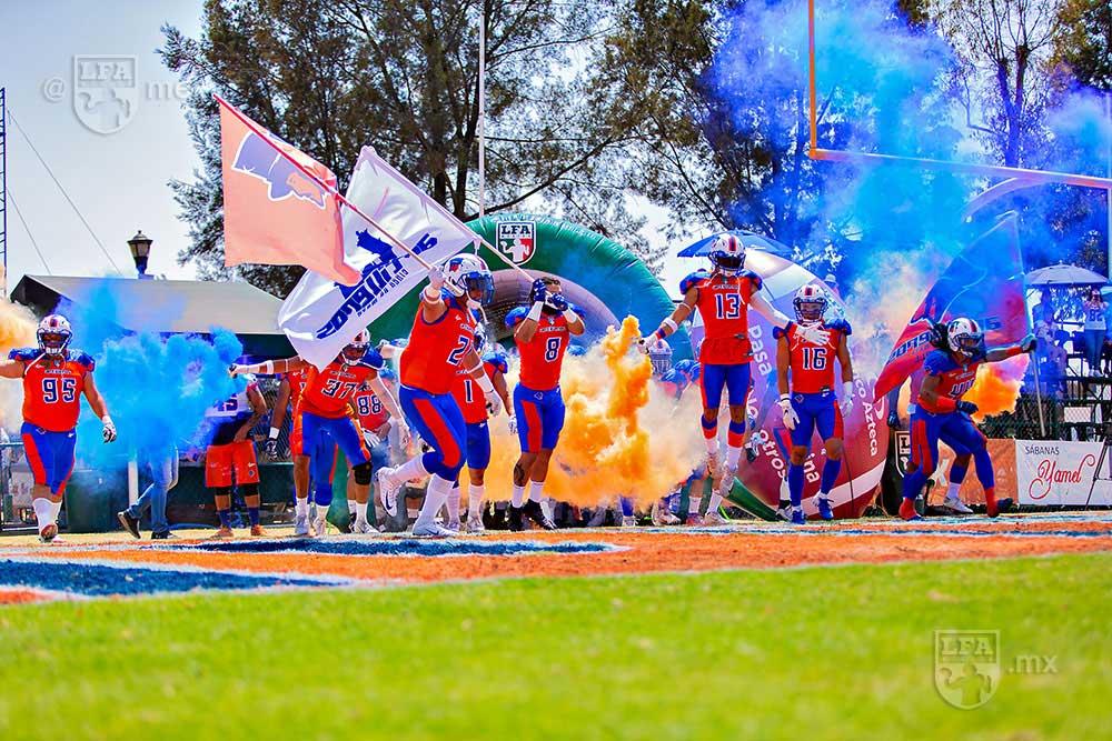 Los colores de Artilleros de Puebla
