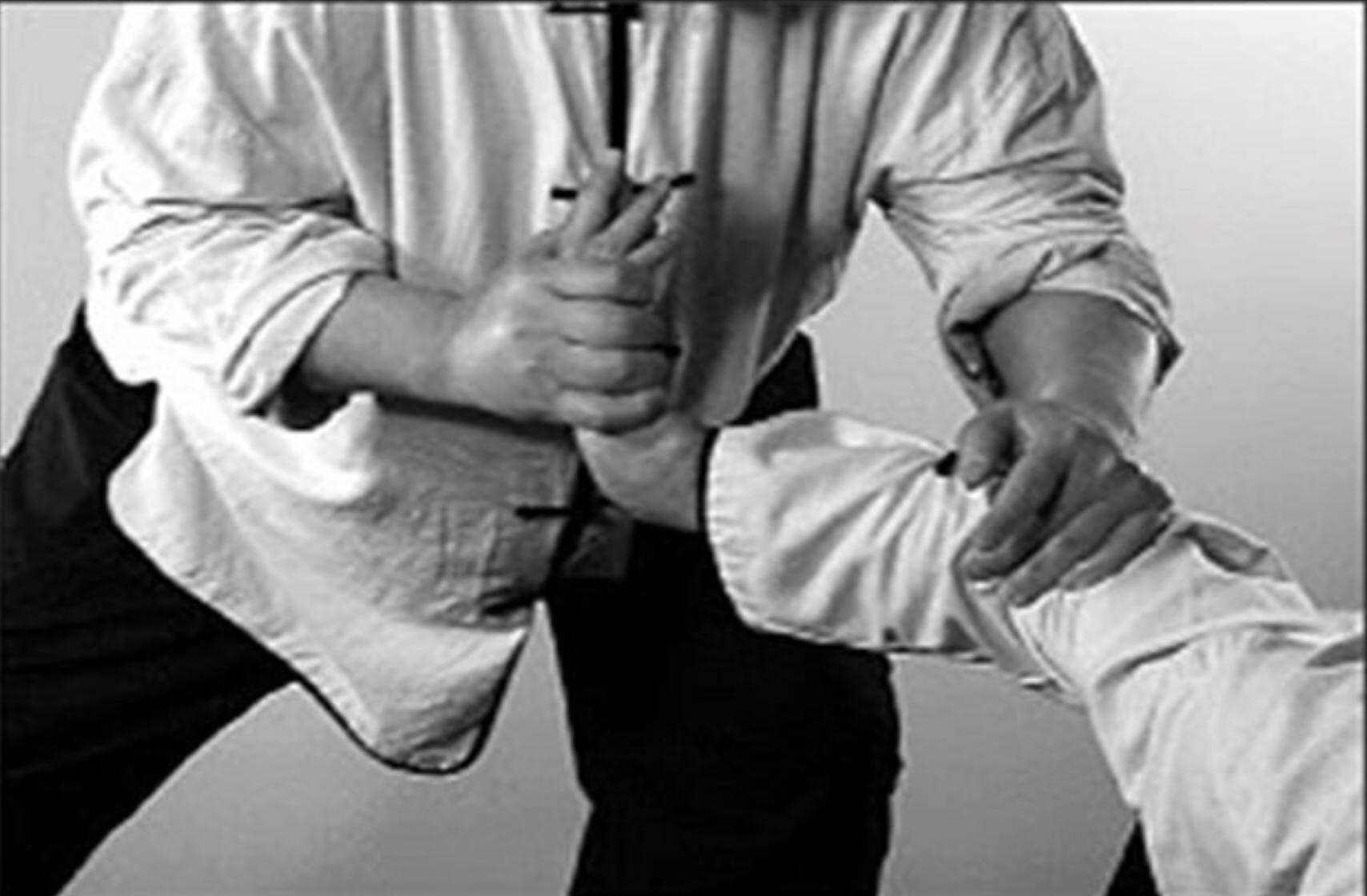 Lfiaa Li Style Qin Na Kung Fu For Self Defence