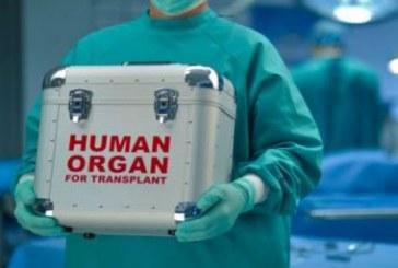 Mais de 30 mil pacientes estão na lista de espera para transplante no país