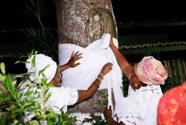 Comunidades do candomblé pedem respeito e tolerância na Alvorada dos Ojás em Lauro de Freitas