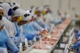 Anvisa proíbe venda de lotes de frango da Perdigão