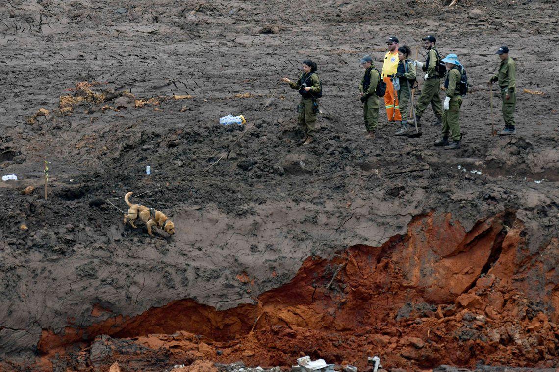 Sobe para 121 número de mortos em Brumadinho; há 226 desaparecidos