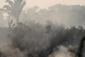 Focos de incêndio na região têm assinatura do desmatamento, afirma Nasa