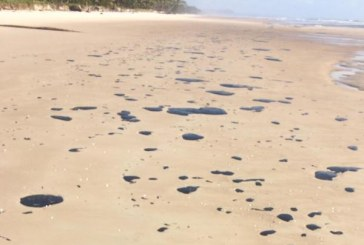 Ministério Público do TCU pede apuração da conduta do governo em vazamento de óleo