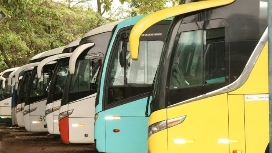 Mais três municípios da Bahia têm transporte intermunicipal suspenso; número sobe para 81