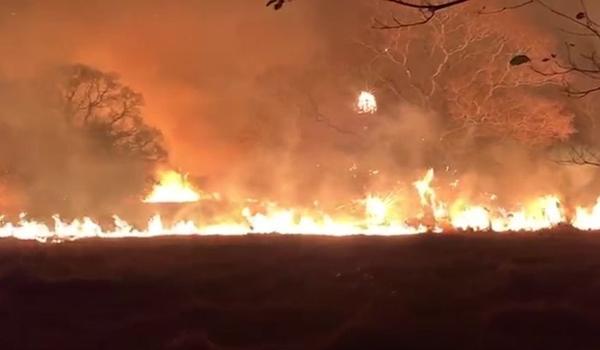 Perícia afirma que incêndio no Pantanal mato-grossense foi causado propositalmente por ação humana