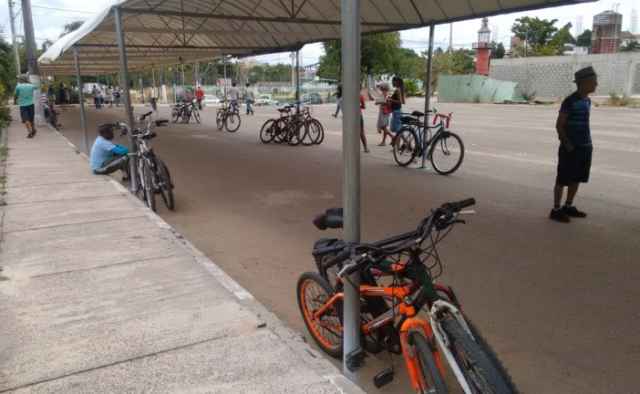 Moema sanciona PL dos ciclistas: Lei destinará 5% das multas de trânsito para a sinalização de vias para os ciclistas