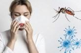 Dengue, zika e chikungunya: especialista alerta para doenças tropicais em plena pandemia