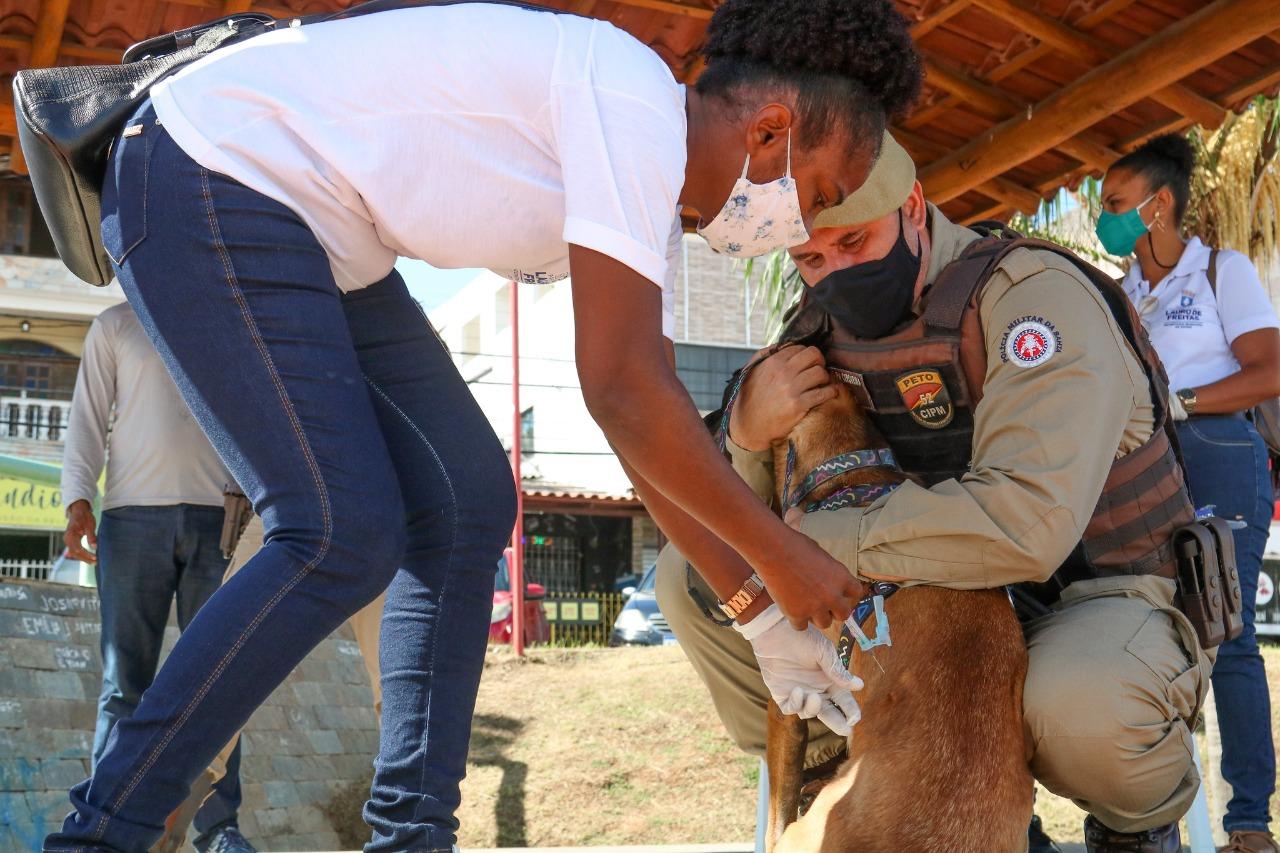 CCZ leva testagem, vacinação e orientação de combate a arboviroses ao Centro de Lauro de Freitas. Moradores aplaudem ação
