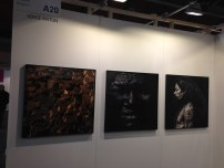 AAF Brussels - Feb 2015