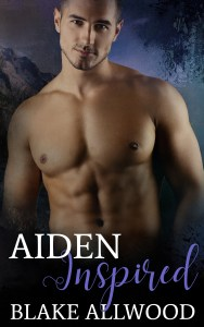 Book Cover: Aiden Inspired