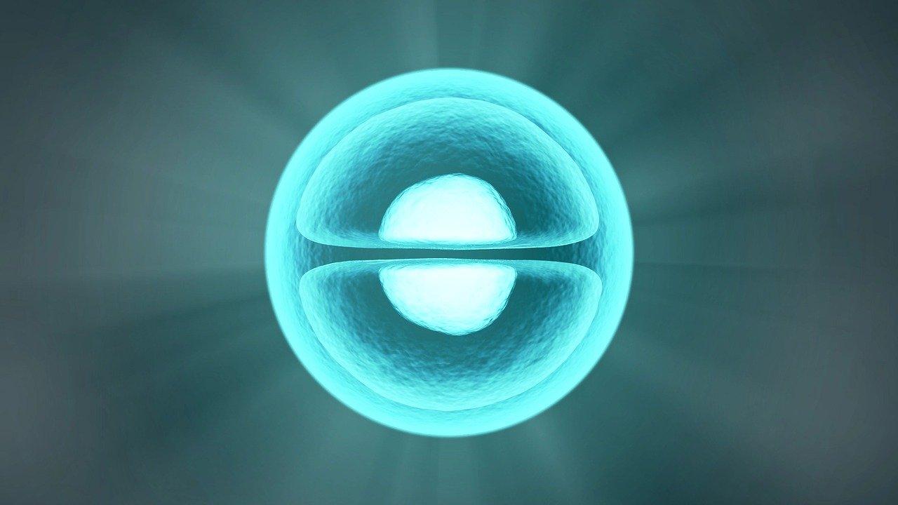 ML Bio Solutions annonce le dosage du premier sujet dans l'essai clinique de phase 1 du BBP-418 pour la LGMD2I | GI LGMD