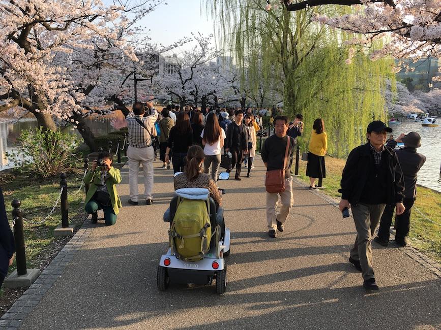 Dans l'Ueno Park à Tokyo