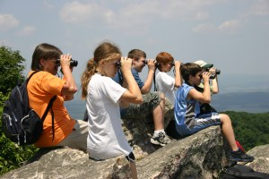 Second Saturday Bird Walk - Bake Oven Knob