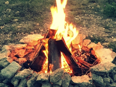Members' Campfire and S'mores