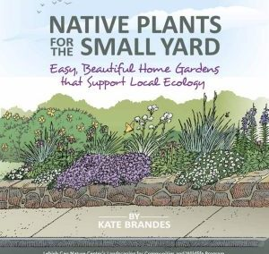 Native Plants for the Small Yard