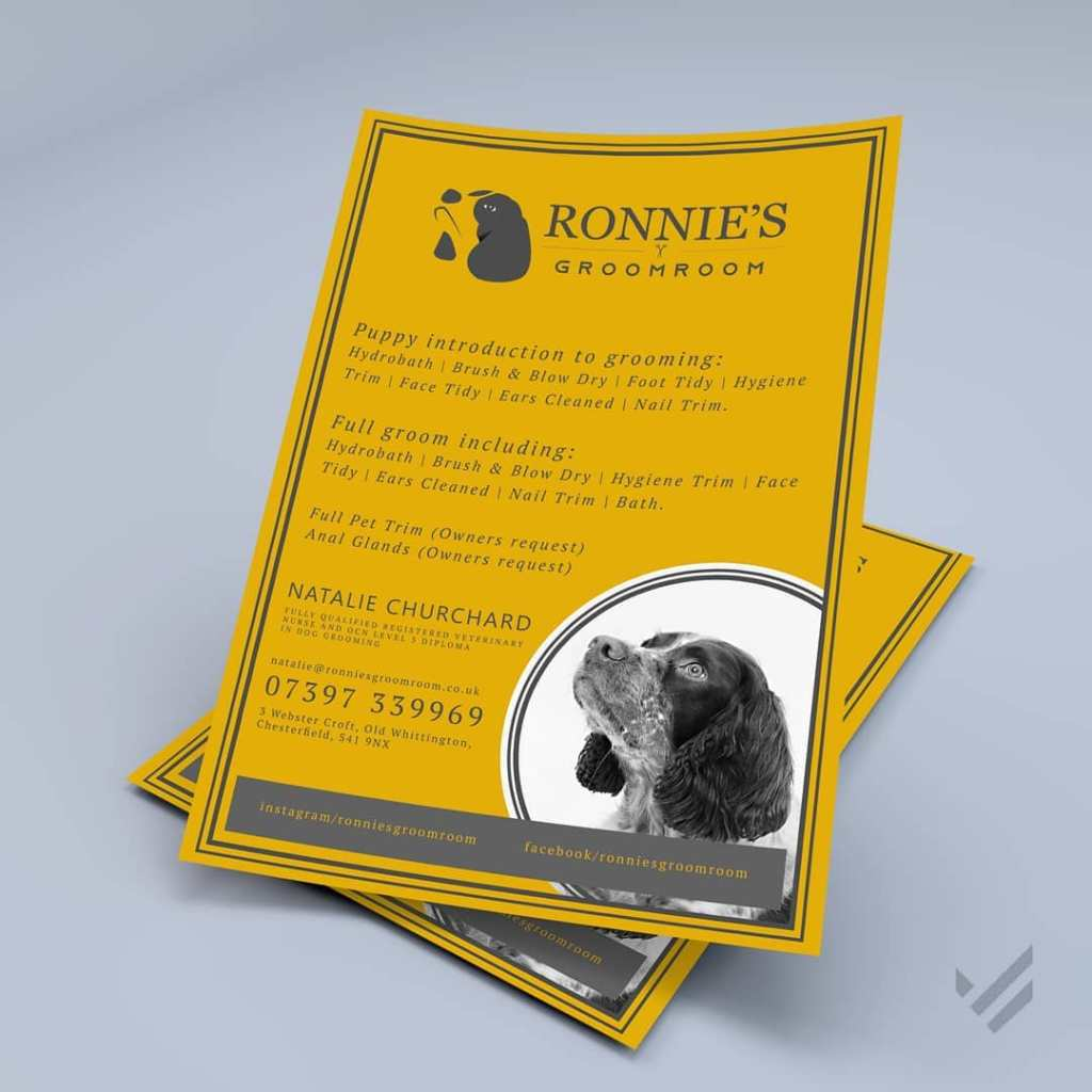 Ronnies Flyers