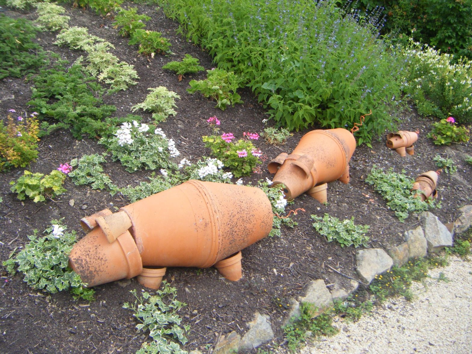 Photo of flower pot pigs