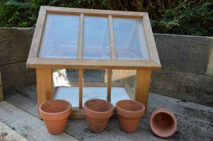 Photo of miniature greenhouse