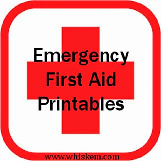 graphic about Free Printable First Aid Guide identified as Crisis 1st AidFree Printables! Bonnie and Blithe