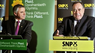 Plaid-SNP-inspiration
