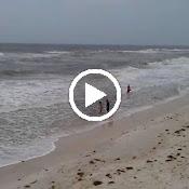 VIDEO0031.3gp