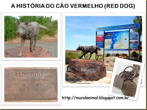 reddog (2)