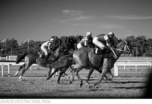 'gran premio nacional' photo (c) 2010, Tim Snell - license: