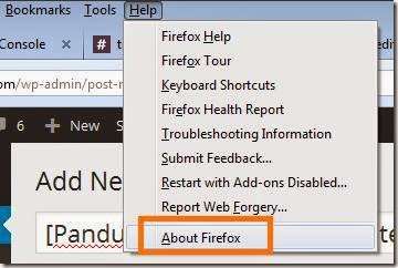 cara simple update browser mozilla firefox