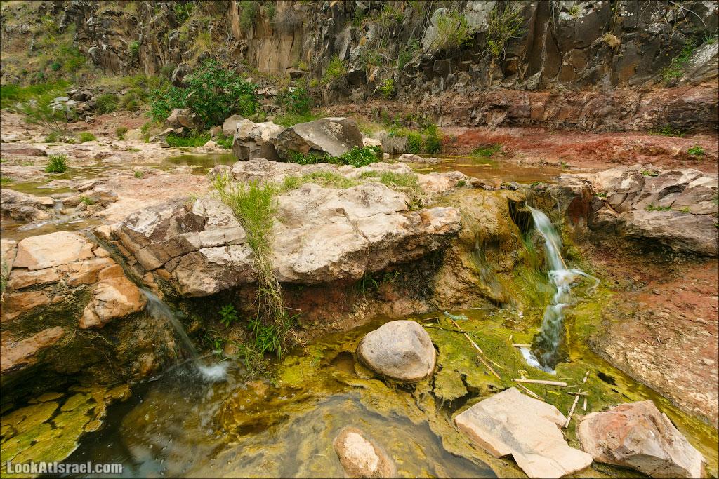 LookAtIsrael.com: Фото-блог о путешествиях по Израилю. Тель Авив, Иерусалим, Хайфа И она даже течет, образуя маленькие водопадики.
