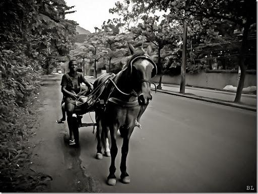 O rapaz e a carroça 2