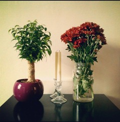 Harry's parents came to visit, we gained a plant that I have no idea of the name and I bought some fresh flowers. #autumn #rust #candles #interior