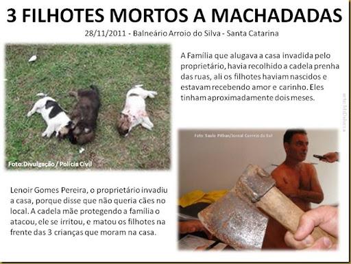 filhotes_mortos_machadadas