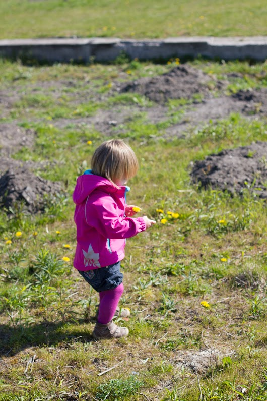 Agnes plukker blomster