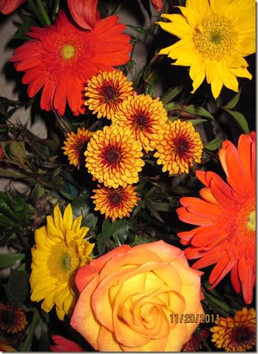 flowers,Tumblerflimsy 004
