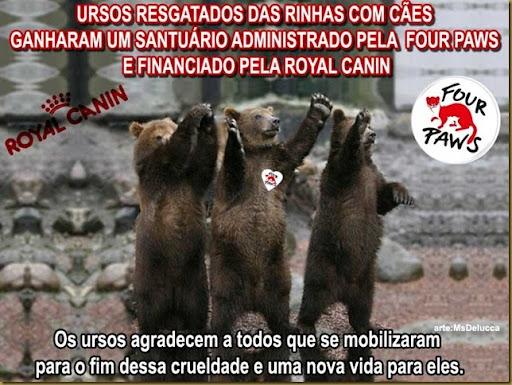 ursos-santuario