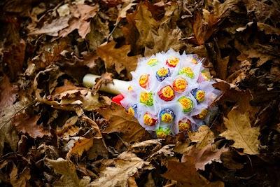 www.tadejbernik.com-2601.jpg