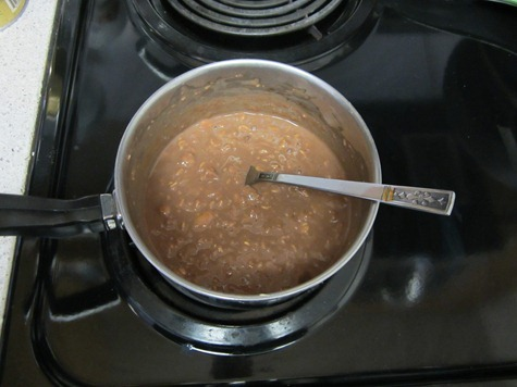 chocolate oatmeal 114