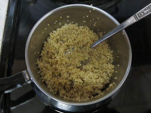 quinoa meatballs 021