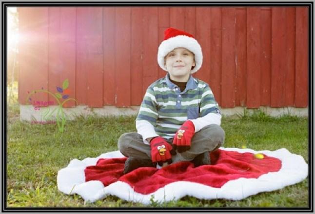 Christmas-Mini-Sample-4720