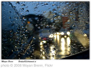 'Rain' photo (c) 2008, Moyan Brenn - license: http://creativecommons.org/licenses/by-nd/2.0/