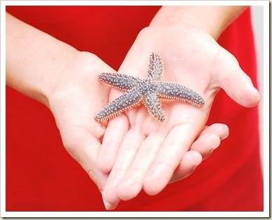 ag and star fish good