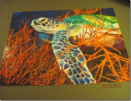 turtle puzzle 001