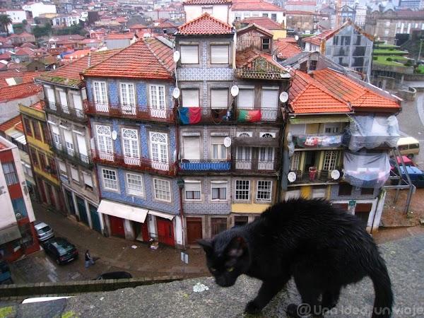 Porto14.jpg