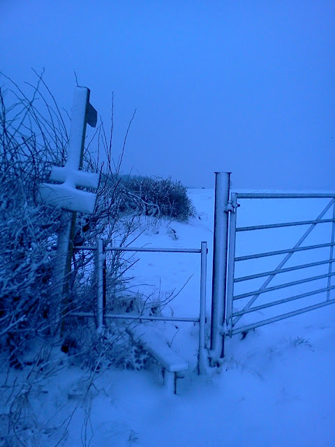Winter Stile